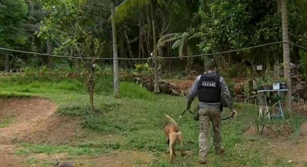 Homem mata três pessoas e fere duas em ataque na zona rural de Mairiporã